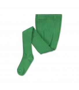 Collants Verdes